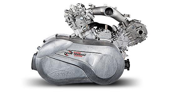 Двигатель 1000 H2